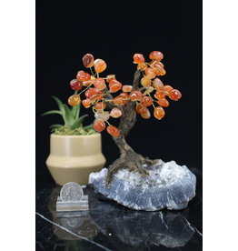 Carnelian  Bonsai Tree on Amethyst 5.5 inch