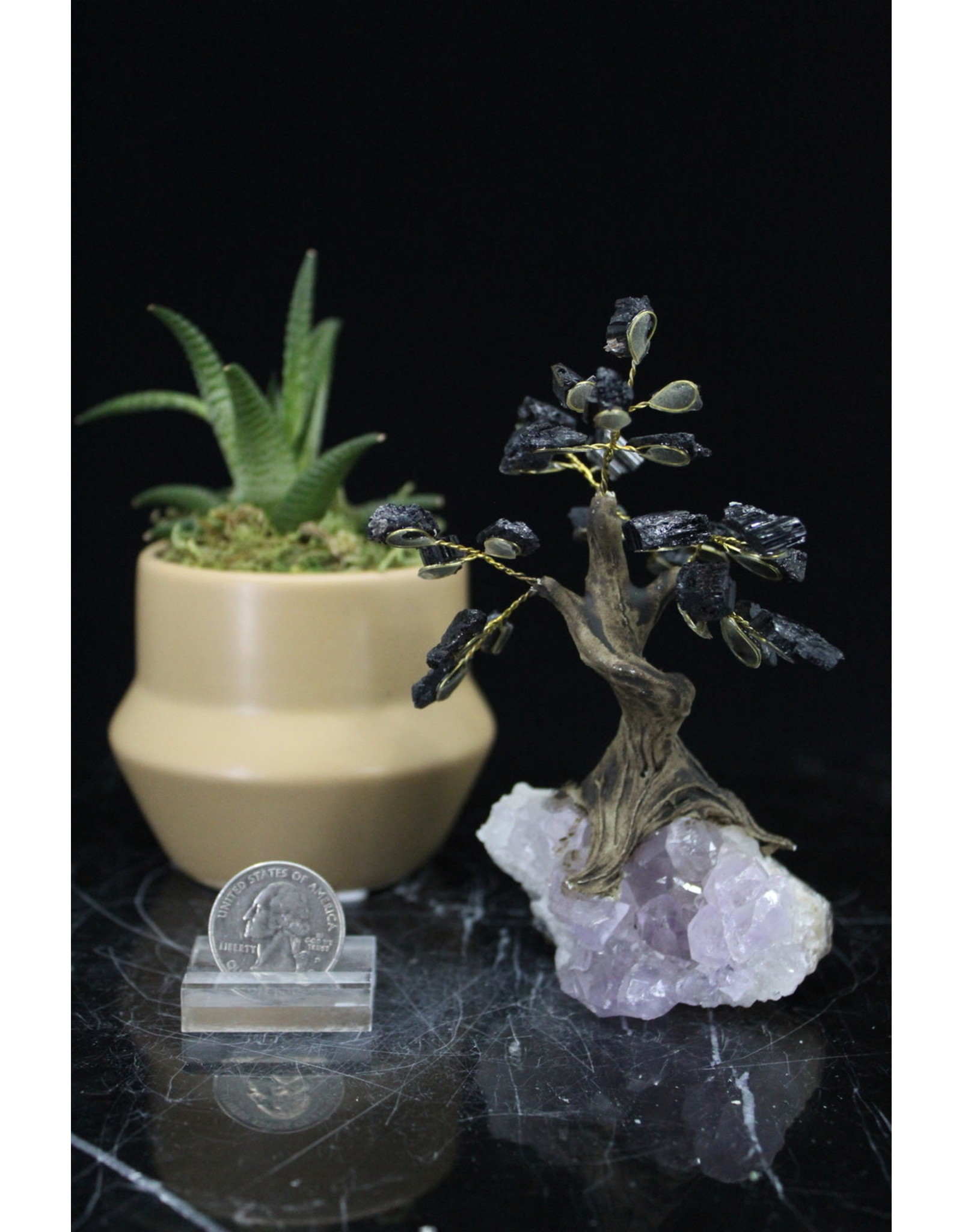 Black Tourmaline  Bonsai Tree on Amethyst 3.5 inch