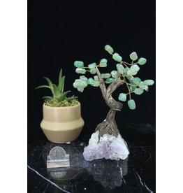 Green Aventurine  Bonsai Tree on Amethyst 5.5 inch