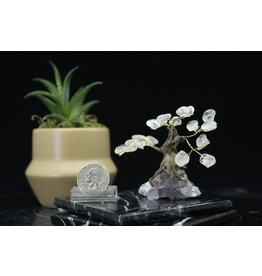 Clear Quartz Mini Bonsai Tree on Amethyst 2 inch