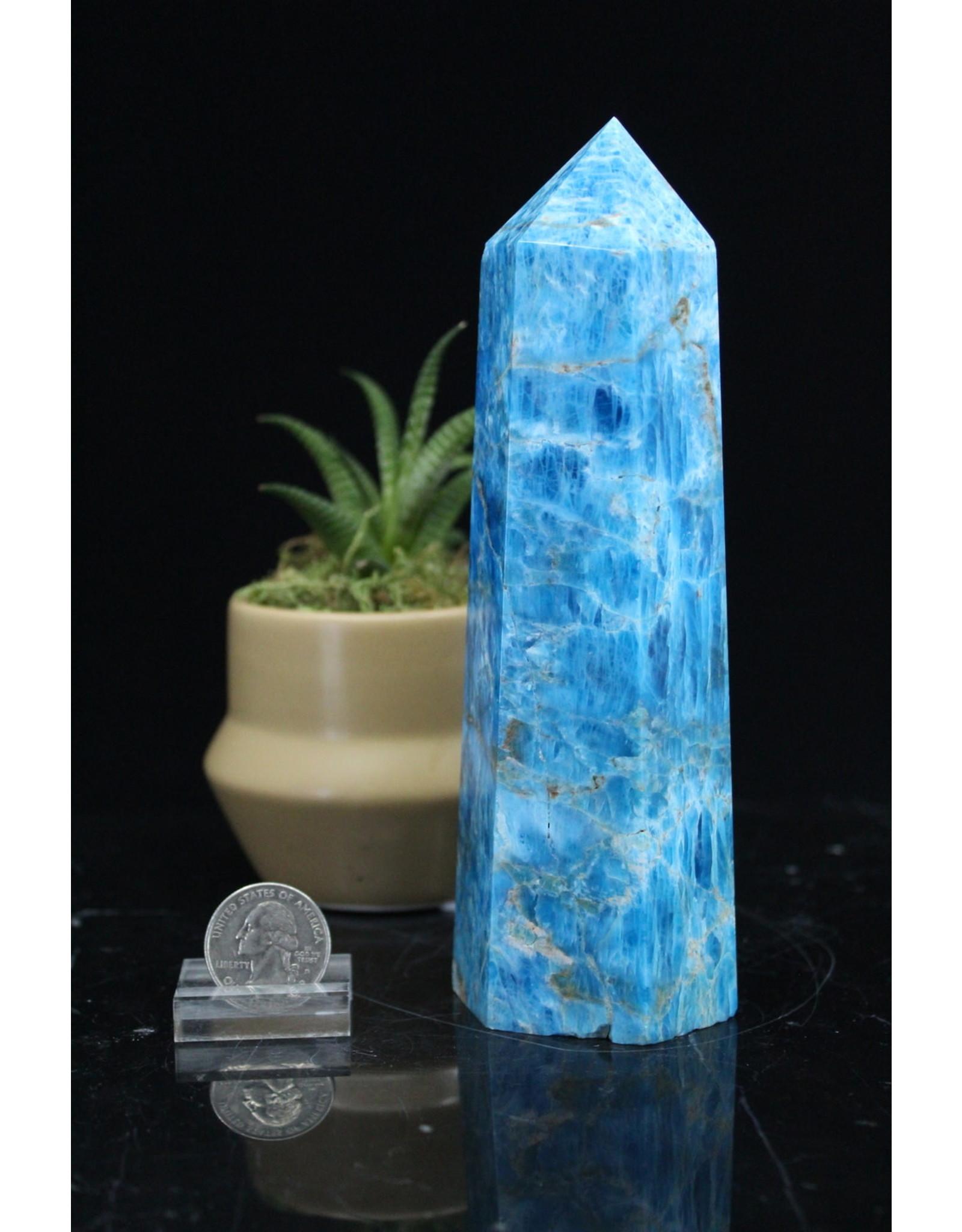 Blue Apatite Tower/Point-XL