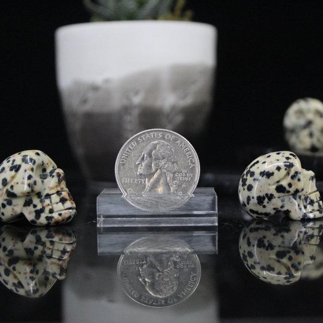 Dalmatian Jasper Skull-Mini