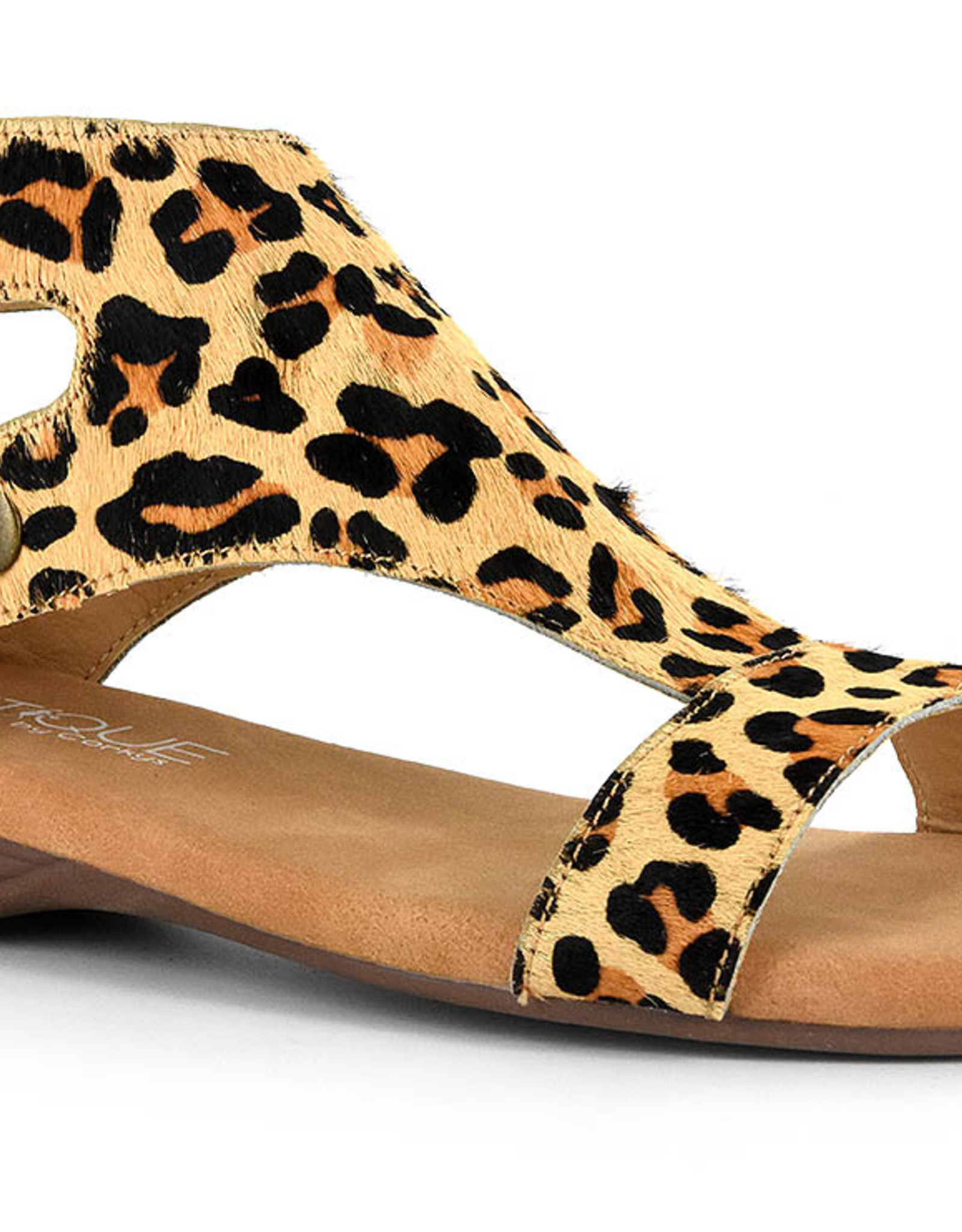 CORKYS CORKY'S JAYDE IN LEOPARD GLADIATOR SANDLE
