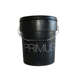 GIORGIO GRAESAN Primus