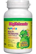 Natural Factors Big Friends Multi-Probiotic Powder 2oz