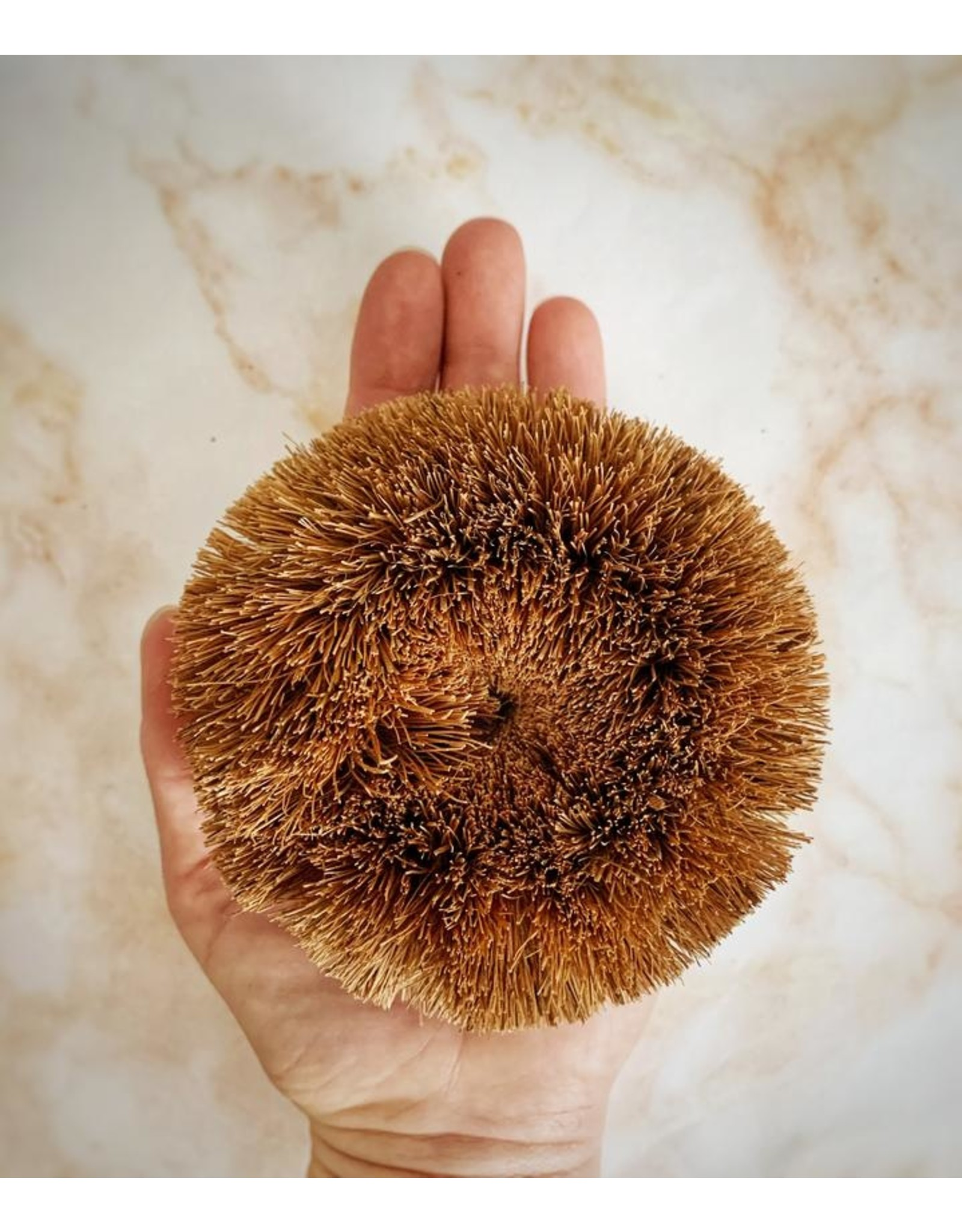 Round Coconut Scrubbie