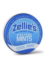 Cool Mint Mints- 65ct Tin