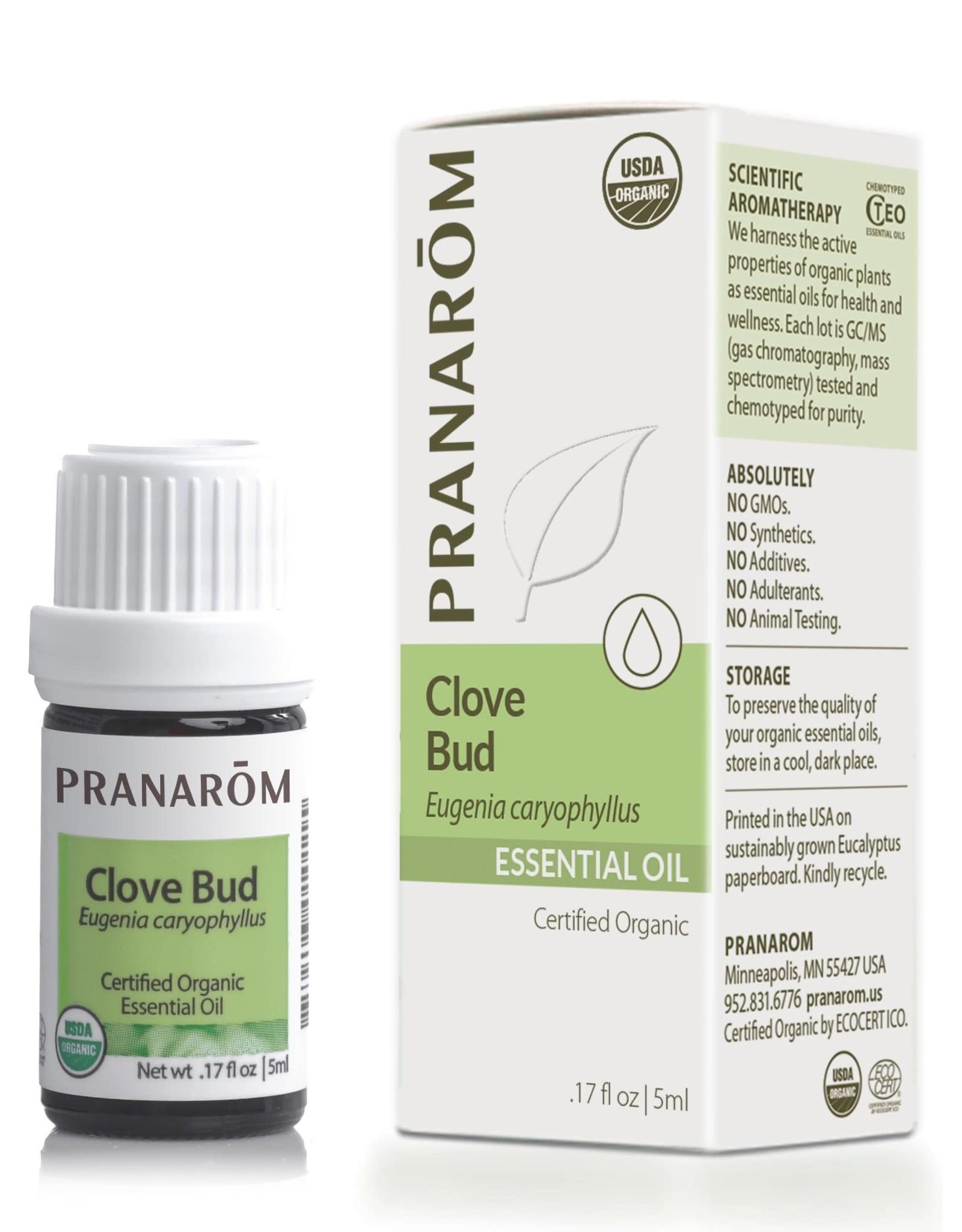 Clove Bud Oil, 5ml