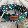Goober Xmas lights collar