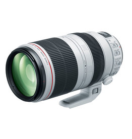 Canon Canon 100-400mm f/4.5-5.6 L IS II USM