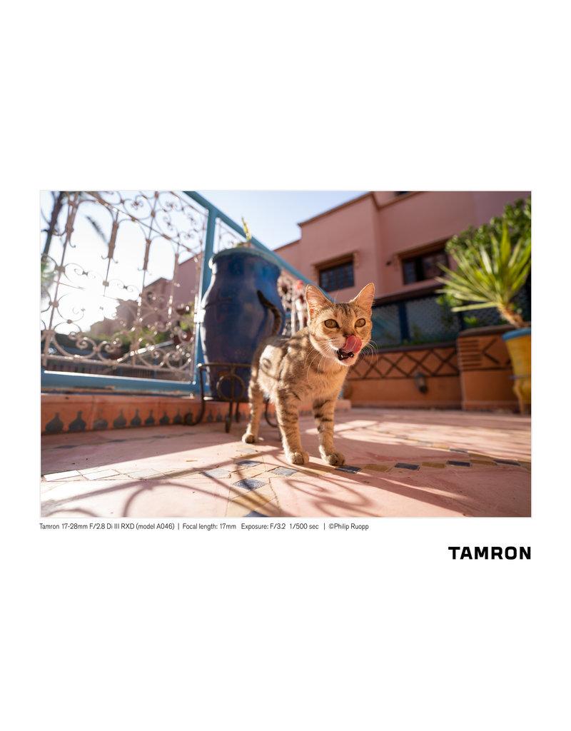 Tamron Tamron 17-28mm F/2.8 Di III RXD for Sony