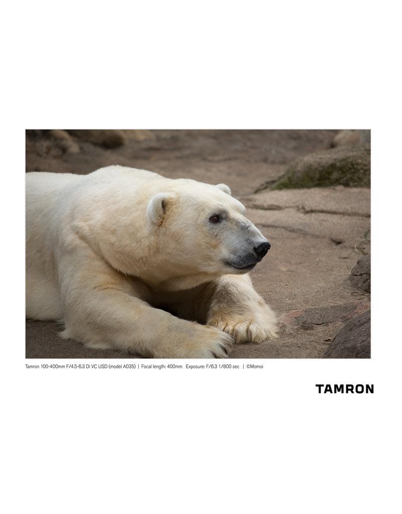 Tamron Tamron 100-400mm F/4.5-6.3 Di VC USD for Canon