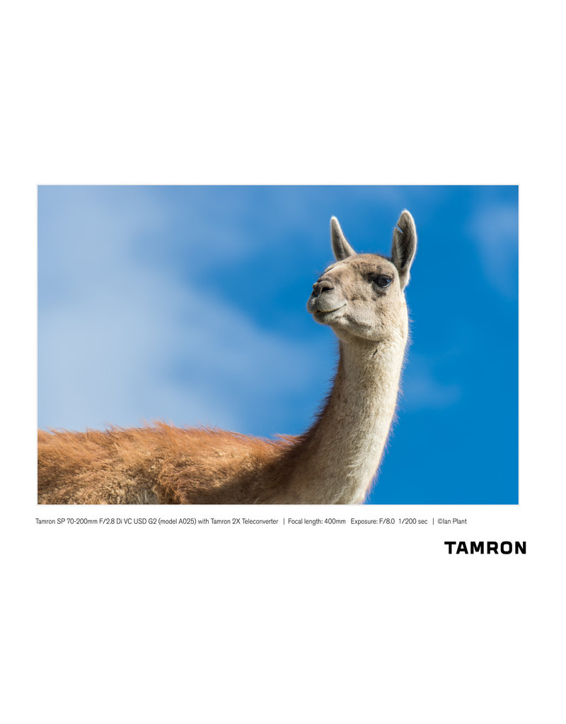 Tamron Tamron SP 70-200mm F/2.8 Di VC USD G2 for Canon
