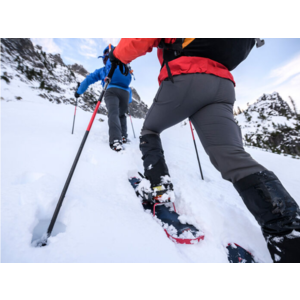 MSR DynaLock™ Ascent Carbon Backcountry Poles
