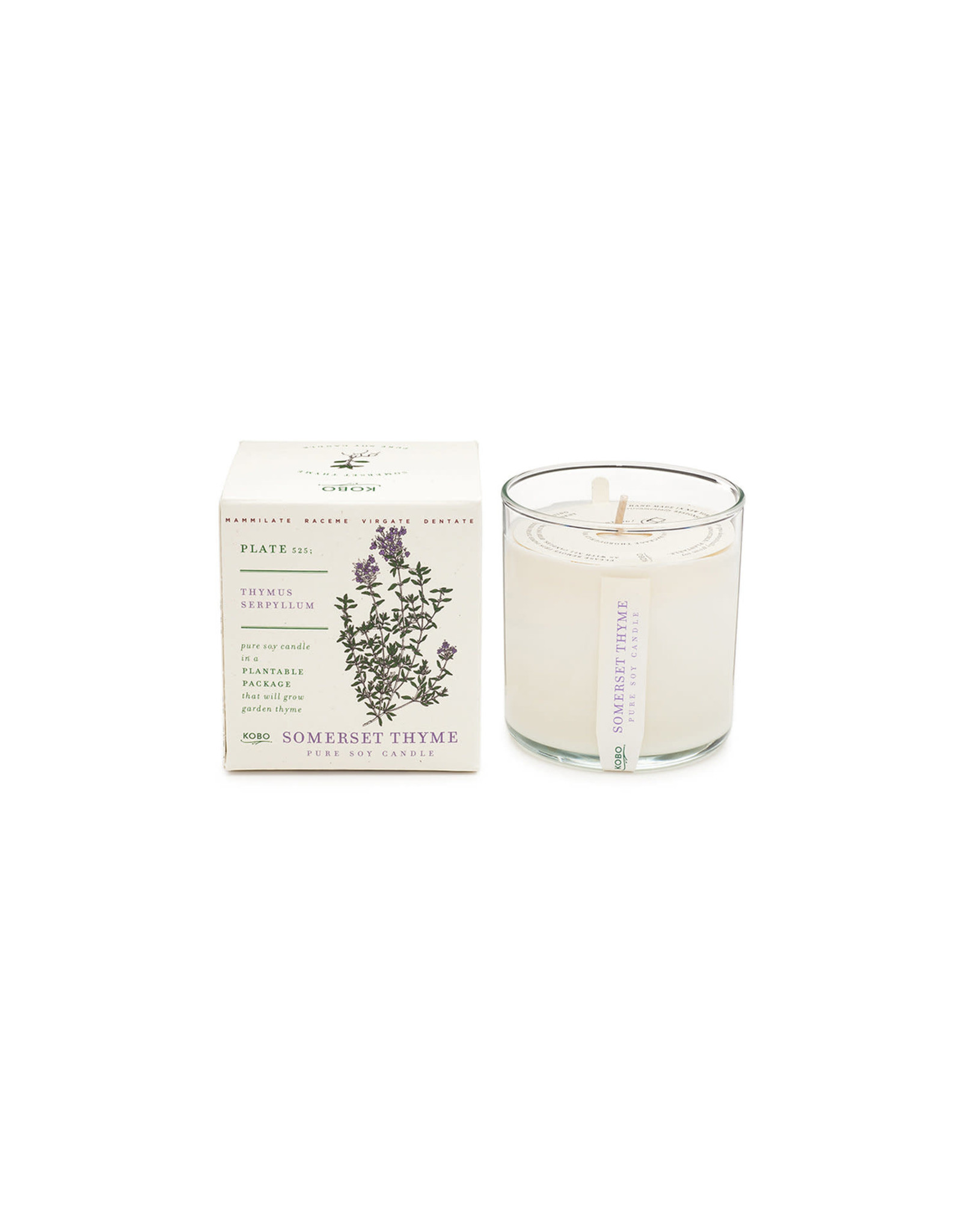 Somerset Thyme Candle