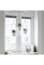 UMB Triflora Hanging Planter in Gold and White