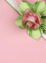 Carole Shiber Light Pink Napkin