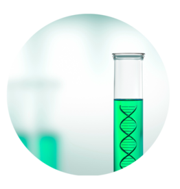 DNA Sexing