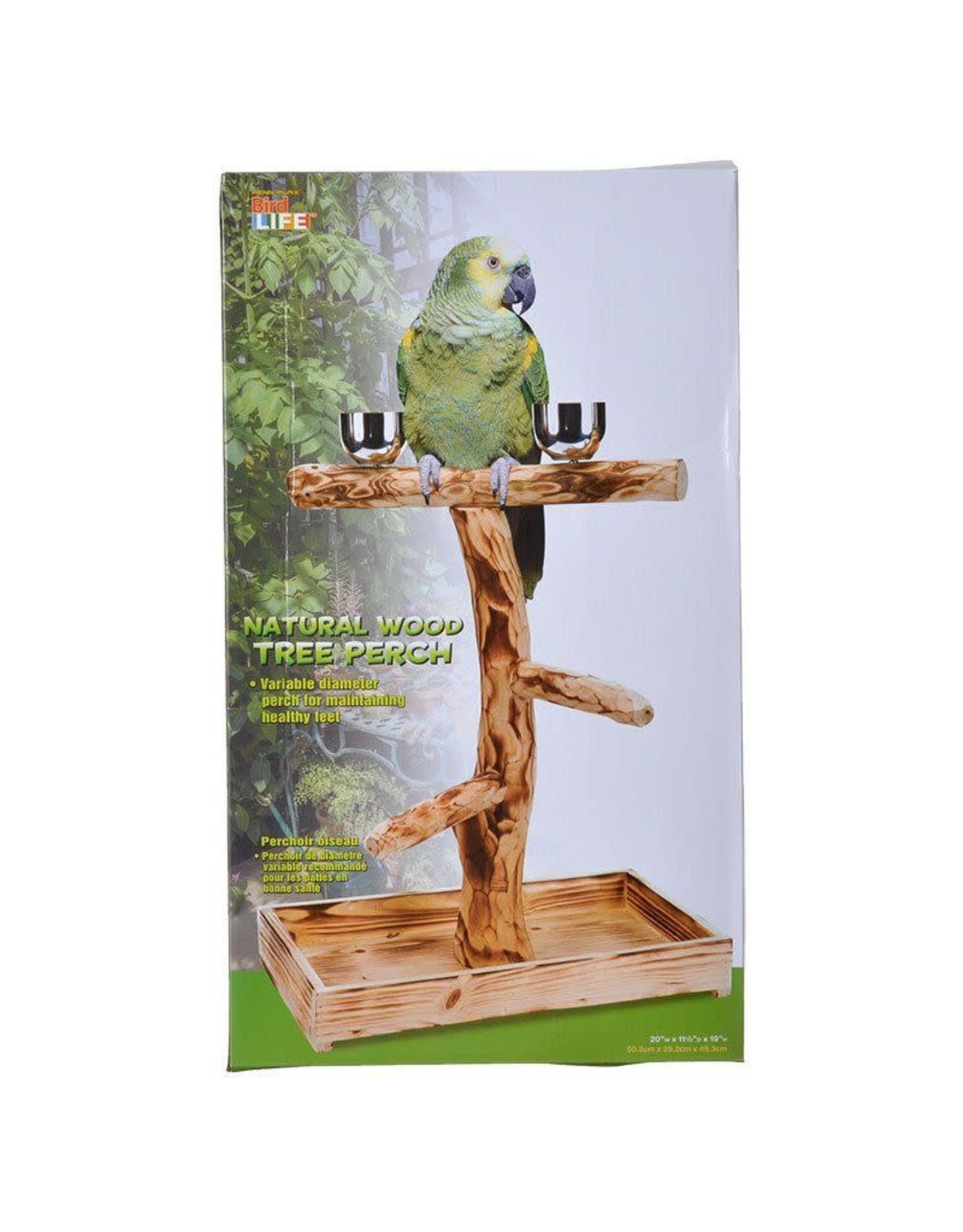 PENN-PLAX 12 IN. NATURAL TREE PERCH FOR SM/MED. BIRDS