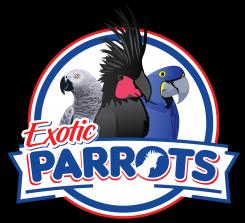 Exotic Parrots LLC