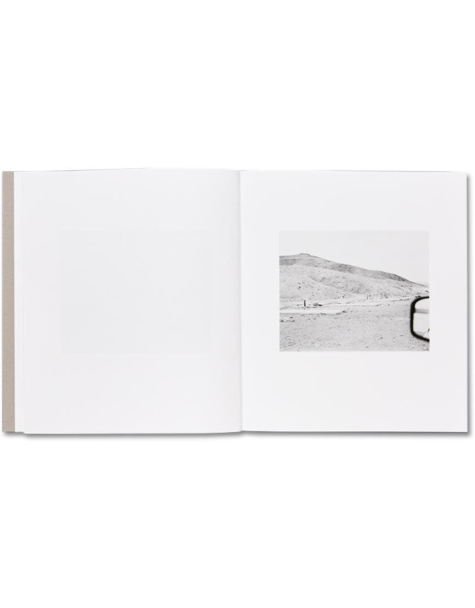 Susan Lipper: Domesticated Land (Signed)