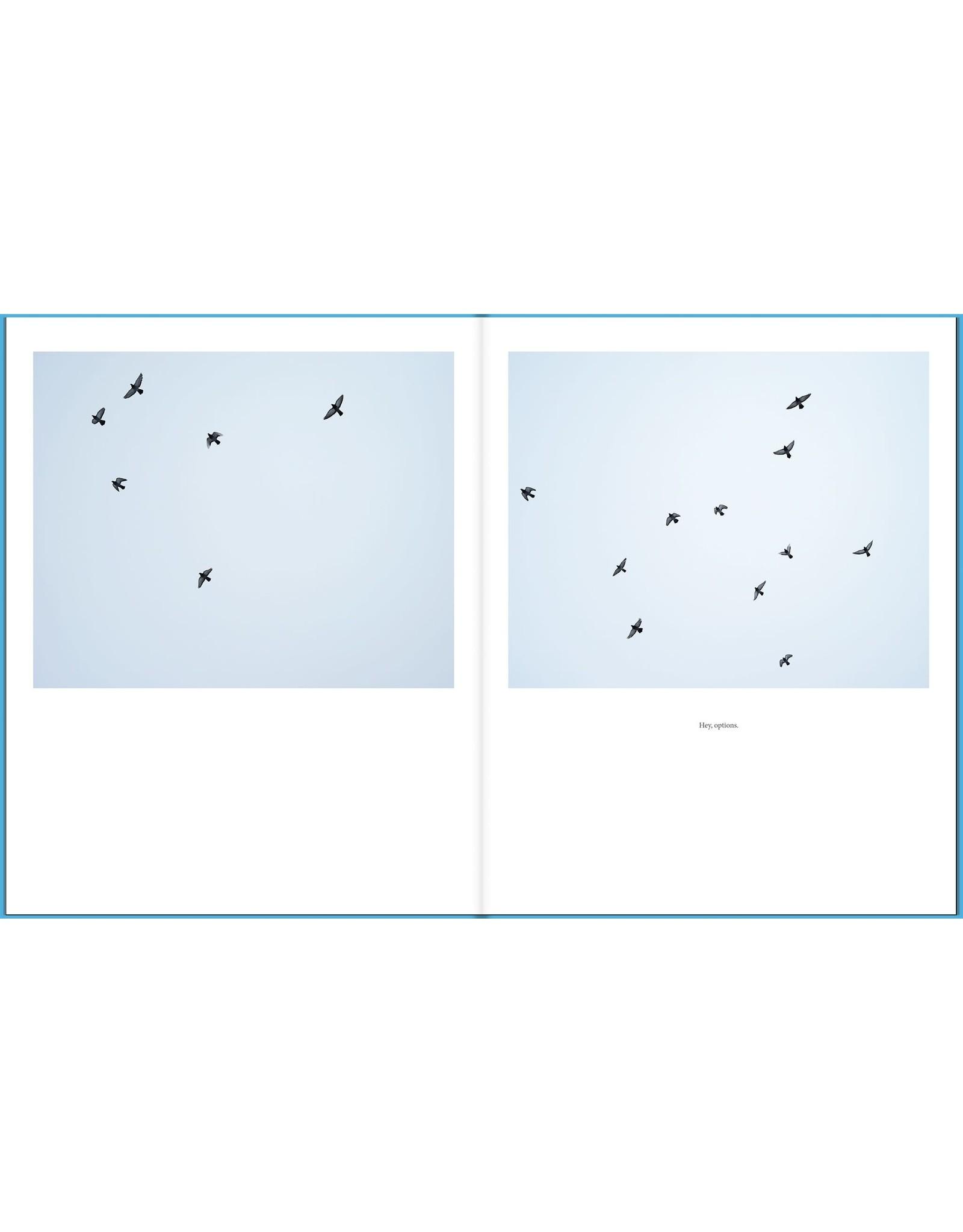 Jason Vaughn & Brad Zellar: Driftless