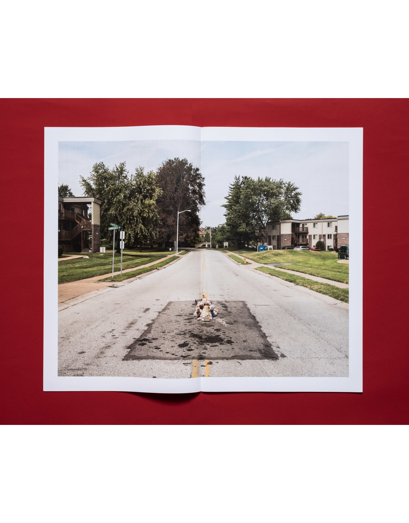 Kris Graves: A Bleak Reality (Signed)
