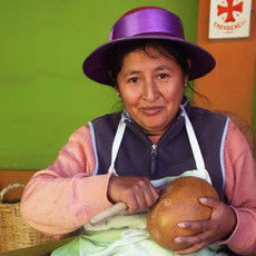 Serrv Avian Motif Gourd Ornament