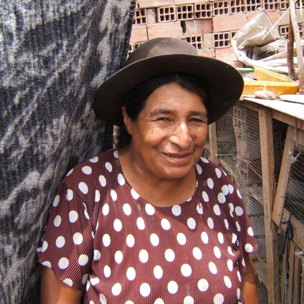 Serrv Peruvian Azurite Sterling Silver Earrings