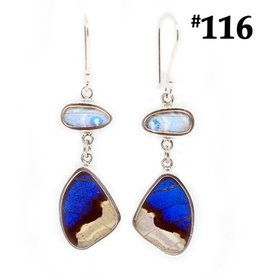 Silver Tree Designs Real Butterfly Wing Flutter Earrings Shimmering Blues