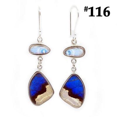 Silver Tree Designs Real Butterfly Wing Flutter Earrings Shimmering Blues
