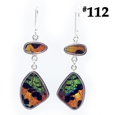 Silver Tree Designs Real Butterfly Wing Flutter Earrings 112 Chrysiridia Rhipheus & Sunset Moth