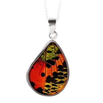"""Silver Tree Designs Real Butterfly Wing Sterling Silver Pendant - 1.5"""" 112 Chrysiridia Rhipheus/Sunset Moth"""