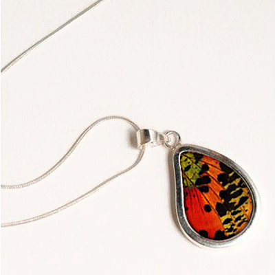 Silver Tree Designs Butterfly Wing Teardrop Pendant - Chrysiridia Rhipheus/Sunset Moth