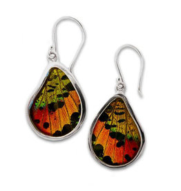 Silver Tree Designs Teardrop Butterfly Earrings 112 Chrysiridia Rhipheus/Sunset Moth