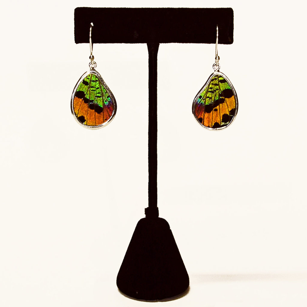 Silver Tree Designs Real Butterfly Wing Sterling Silver Teardrop Earrings 112 Chrysiridia Rhipheus/Sunset Moth