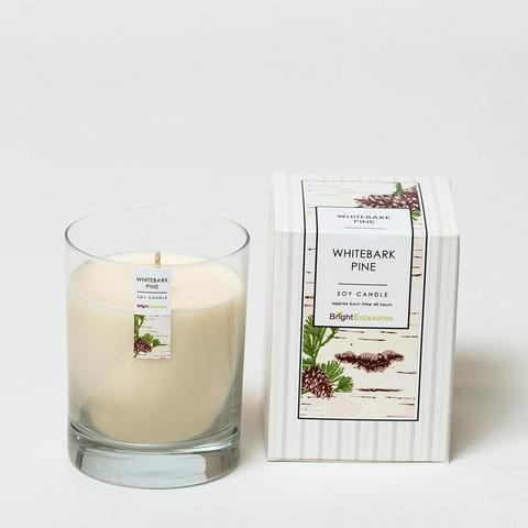 white bark candle