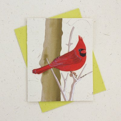 Mr Ellie Pooh Cardinal Greeting Card