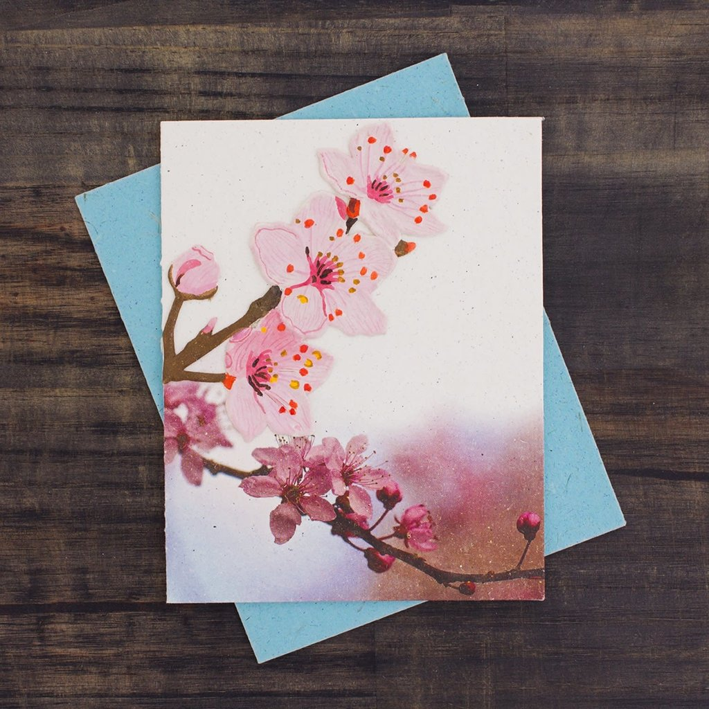Mr Ellie Pooh Cherry Blossoms Greeting Card