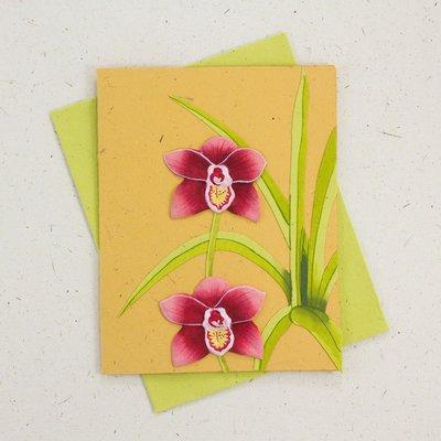 Mr Ellie Pooh Orchid Flower Greeting Card