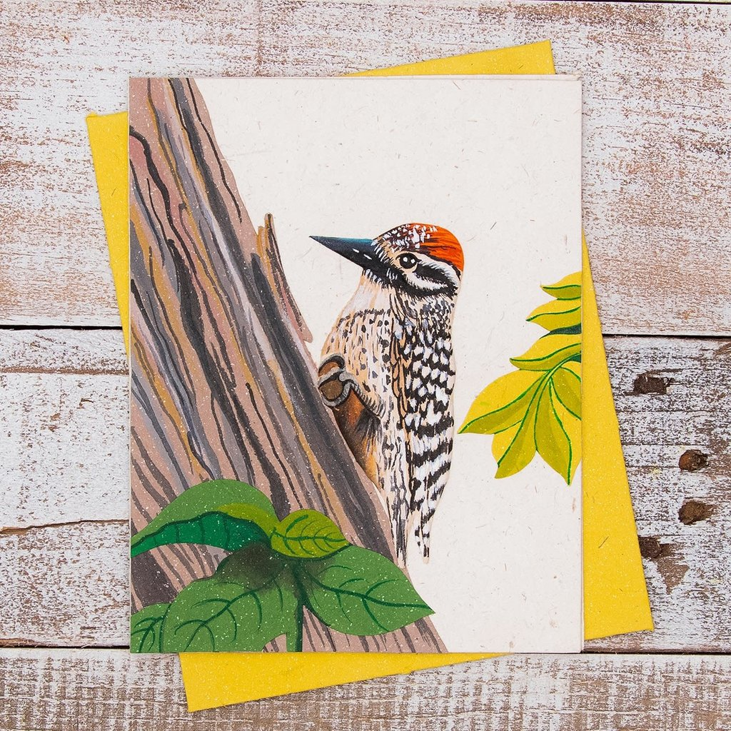 Mr Ellie Pooh Woodpecker Greeting Card