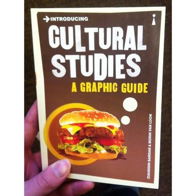Microcosm Introducing Cultural Studies: A Graphic Guide