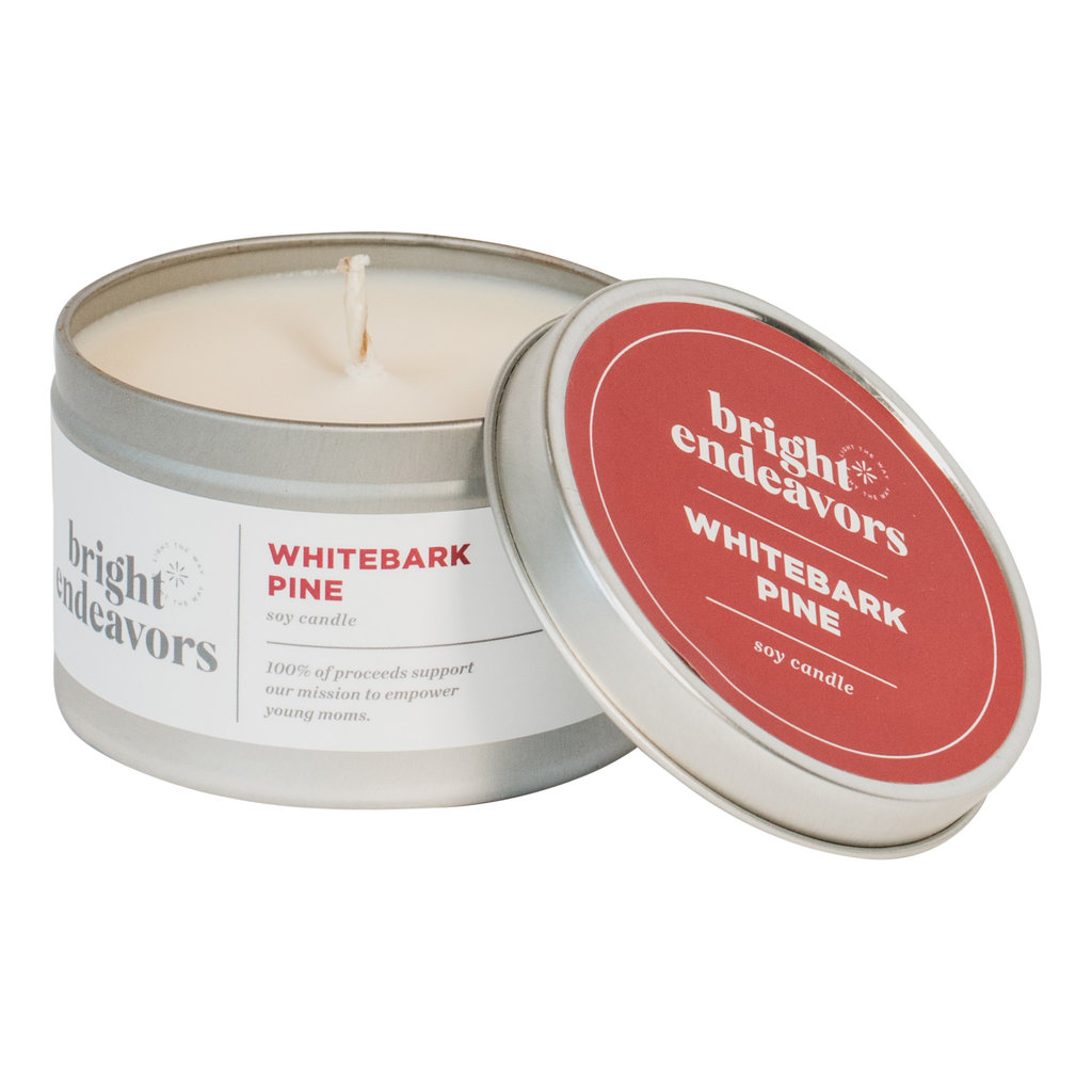 Bright Endeavors Whitebark Pine Candle 8 Ounce Tin