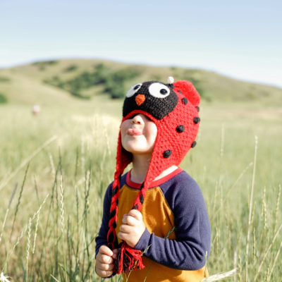 Andes Gifts Kids Animal Hat: Ladybug