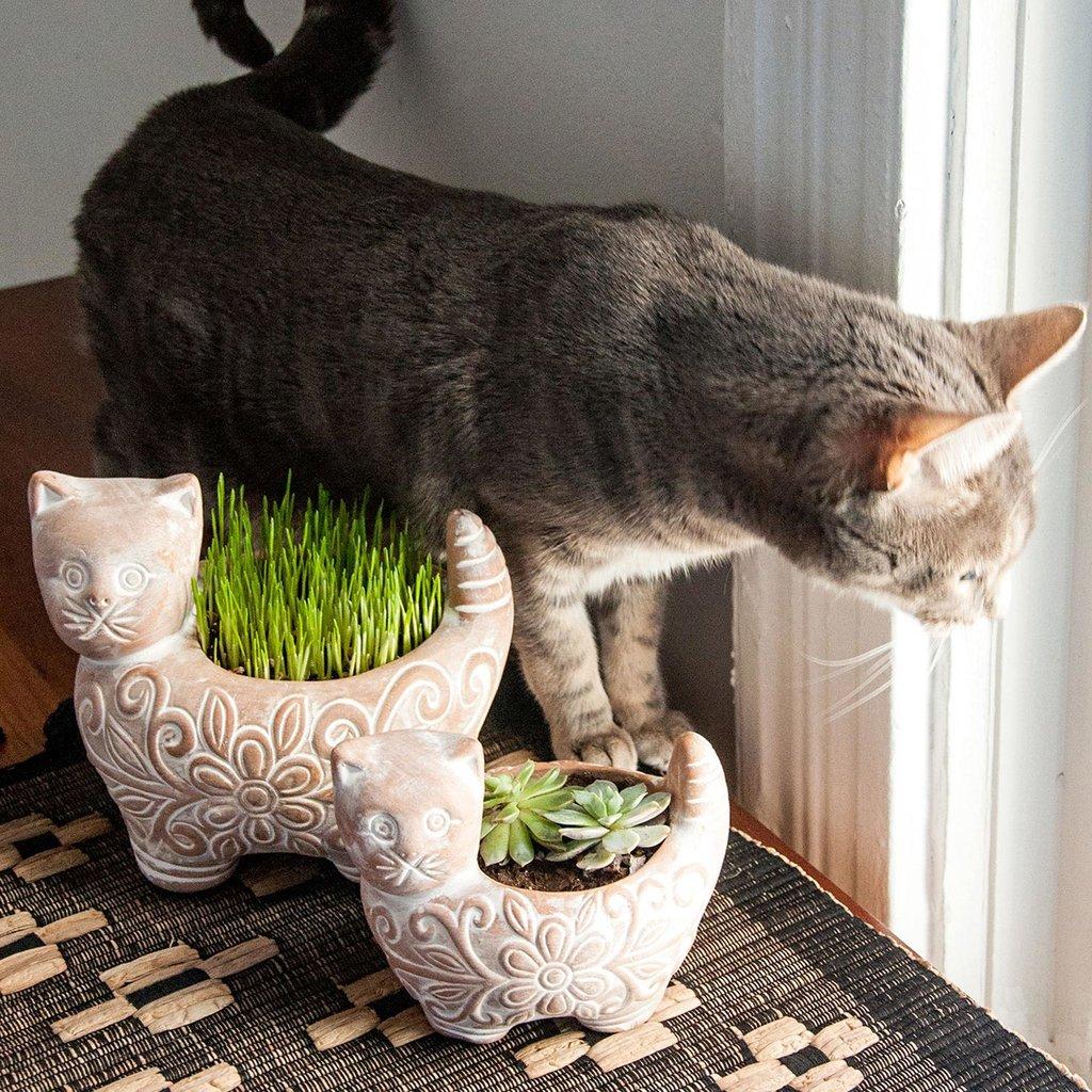 Ten Thousand Villages Garden Kitty Small Planter
