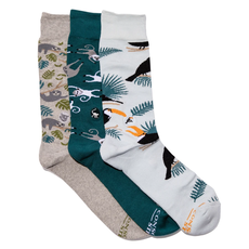 Conscious Step Socks that Protect Rainforest Animals Gift Box