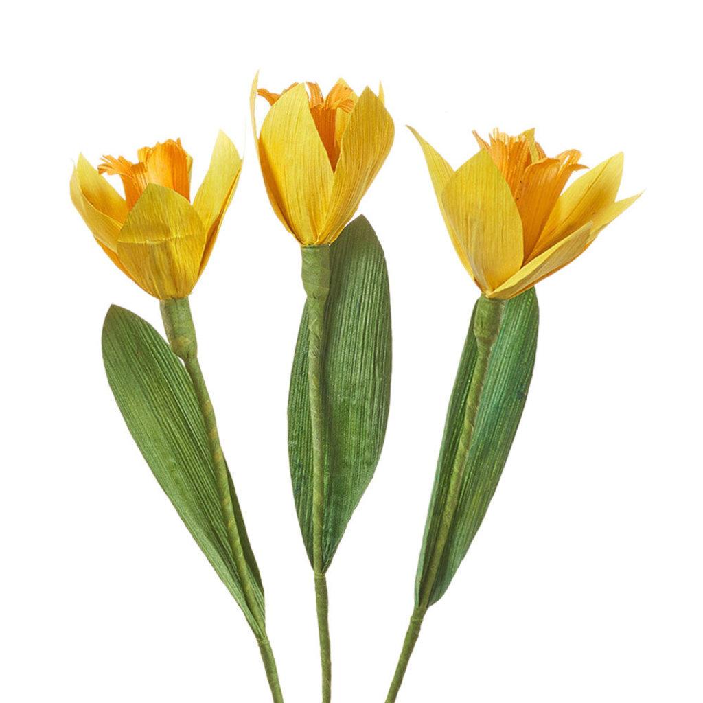Serrv Cornhusk Daffodil Flower