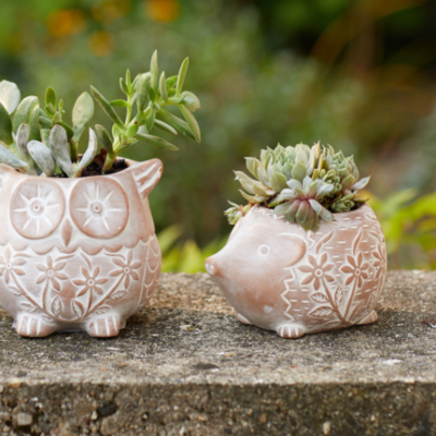 Serrv Happy Hedgehog Terracotta Planter