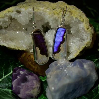 Silver Tree Designs Butterfly Wing Large Rectangle Earrings - Blue Morpho & Morpho Sulkowskyi