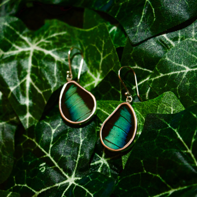 Silver Tree Designs Butterfly Wing Teardrop Earrings - Prepona